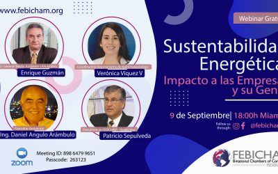 Sustentabilidad Energética, Impacto en las Empresas y su Gente
